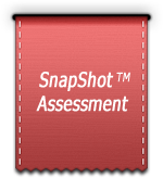 snapshot assessment