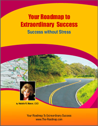Success without Stress eBook
