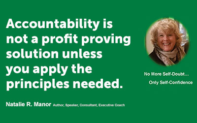 Accountability is not a profit proving solution unless you apply the principles needed.